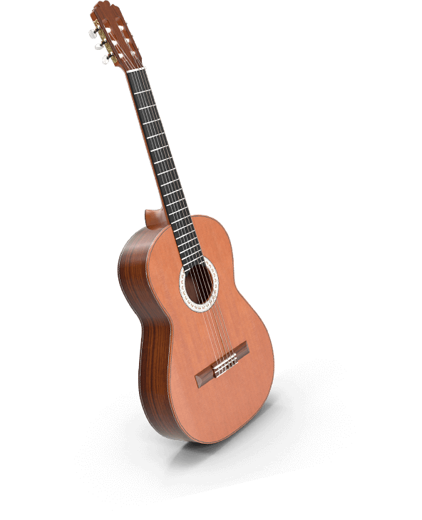 Guitar stock
